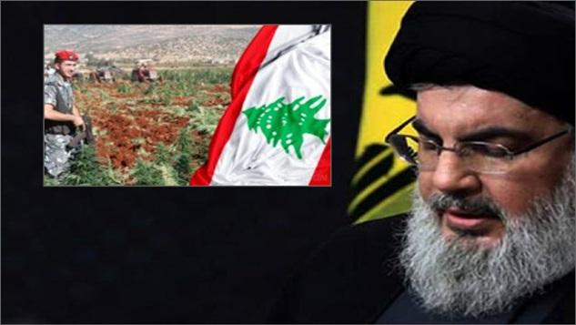 Seyyid Nasrallah'ın tarım ve sanayi cihadının etkinliği